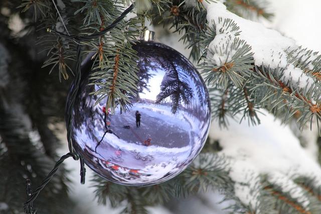 Aby vánoční stromeček dlouho těšil